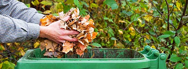 kompost-for-ditt-tradgardsavfall